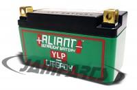 YLP09xa